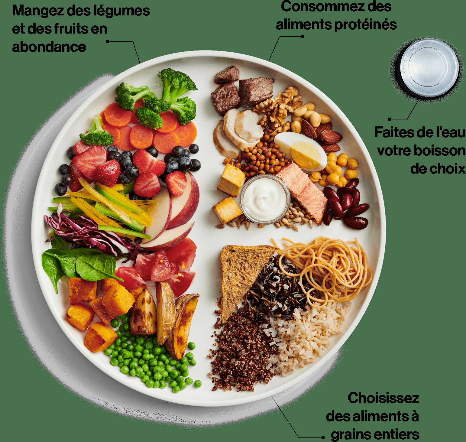 Nouveau Guide alimentaire canadien